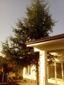 външни ремонти на къща